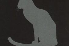TEXILAC CAT EYE